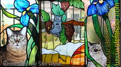vitraux aux chats