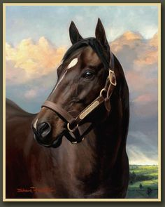 STORM Cat, who died last week at age 30, was one of five stallions born in the 1980s destined to make a massive imprint on global thoroughbred breeding.   Foaled in the US in 1983, Storm Cat arrived two years after European champion Sadler's Wells (won the Britain-Ireland premiership 13 times) and three years before Danehill, a nine times champion in Australia, multi-Japanese champion Sunday Silence and New Zealand giant Zabeel.