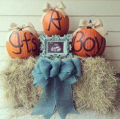 Our pumpkin gender reveal #babyboy #genderreveal #babyno3