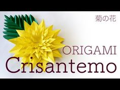 ORIGAMI - Crisantemo (Chrysanthemum flower - 菊の花) - YouTube