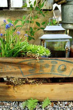 PLANTENE I BOKS: Planter og en lykt i en gammel trekasse er et vakkert lite stilleben i denne hagen. Kreasjonen kan flyttes rundt etter eget ønske, behov og sol/skygge.