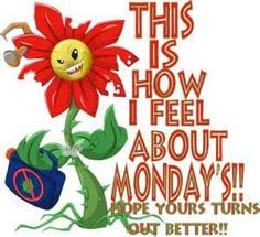 This Is How I Feel About Mondays monday good morning monday quotes good morning quotes happy monday funny monday quotes monday quote happy monday quotes good morning monday Hate Monday Quotes, Good Day Quotes, Happy Quotes, Funny Quotes, Weekend Quotes, Awesome Quotes, Monday Images, Monday Pictures, Funny Pictures