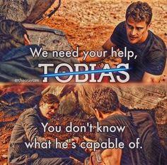 Dauntless. Abnegation. Amity. Erudite.Candor Divergent Series, We Need You, Tobias, Erudite, Blog, Blogging