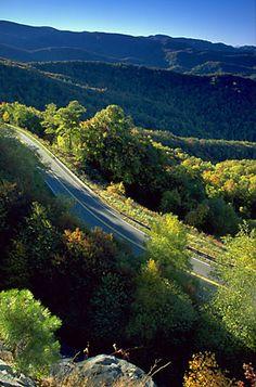 Cherokee National Forest, North Carolina.