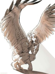 Hawks is literally the best thing that's happened to this fandom omfg