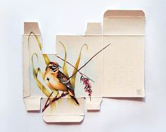 Birds Painted on Unfolded Pharmaceutical Boxes by Sara Landeta