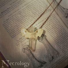 Bone  Crystal Necklace Fox Bone Bone Jewelry Quartz by Necrology