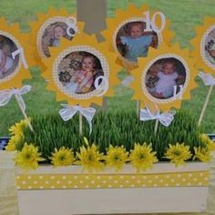 My Little Sunshine Party - love the pictures throughout the first year!
