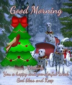 Good Morning, Wishing You A Happy And Wonderful Week. God Bless good morning good morning quotes good morning sayings good morning image quotes good morning christmas quotes Good Morning Wishes Gif, Good Morning Sister, Good Morning Image Quotes, Morning Blessings, Good Morning Picture, Good Morning Greetings, Good Morning Good Night, Monday Blessings, Morning Sayings