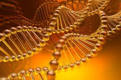The ancient Vedic rishis in all their wisdom said as early as 8000 BC , that our universe is not woven from matter but consciousness . These seers and channels with 12 strand DNA and king sized pineal glands said, that the universal laws are clear, your attitude about your life will shape it..*