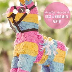 the ultimate guide for hosting a margarita party