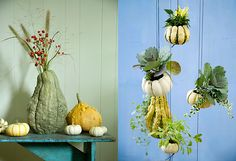 Five Favorites: Decorating with Pumpkins in The BULLETIN at Terrain