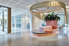 Van Eijk & Van der Lubbe deliberately approached the interiors of the 84-bed health facility like they were creating a 4-star hotel to give patients a more comfortable stay. Vertical City, Utrecht, Grand Piano, Floor Finishes, Dezeen, Concert Hall, Boutique, Interior Accessories, Door Handles