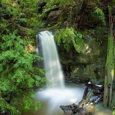 Caliparks Big Basin Redwoods, Local Parks, Park Photos, Park City, Northern California, State Parks, Waterfall, December, Activities