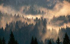 Bilderesultat for schwarzwald süden / dumont bildatlas bücher hajk scout