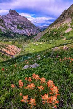"""Yankee Boy Basin (Colorado).  24""""x36"""" Canvas Wraps just $200. $120 off.  Free shipping. Only until 03/26.  http://www.larsleber.sale/ Please message me if I need to add a specific photo.  Feel free to like, share, or comment. Thank you for looking and for liking Lars Leber Photography!"""