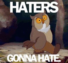 "reaction gif ""Haters gonna hate"" swaggering owl"