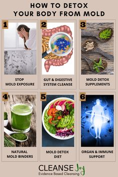 How to Detox Your Body from Mold Naturally Using Diet & Supplements Mold Allergy Symptoms, Toxic Mold Symptoms, Detox Diet Recipes, Mold Exposure, Gut Microbiome, Diet Supplements, Natural Foods, Detox Your Body