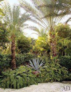 Oscar de La Renta's Lush Garden in the Dominican Republic