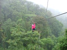 Zip line in the rain forest.  Costa Rica