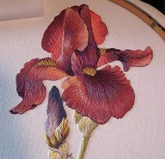 Needle Painting Embroidery -- Iris looks like it is coming right off the fabric!