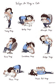Ways to hug your cat…
