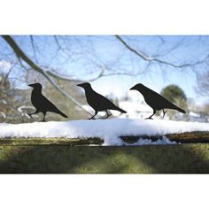 Raven Brother Garden Birds, Metal Ornaments for Pot, Post or Fence