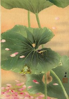 lalulutres:  Bush Cricket with Falling Blossoms by Kako Tsuji