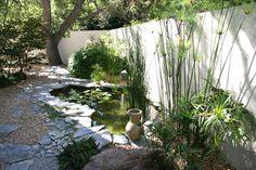 Bassin contemporain, inspiration nature