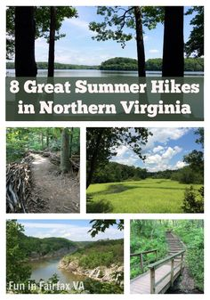 Here are 8 great summer hikes in northern Virginia, with an emphasis on shady trails, cooling water, relaxing stops, and family fun.