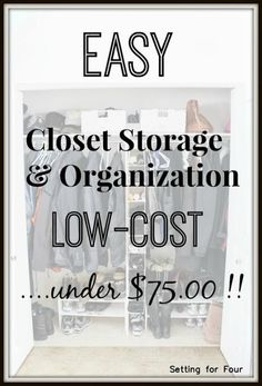 Easy closet storage and organization - under $75!