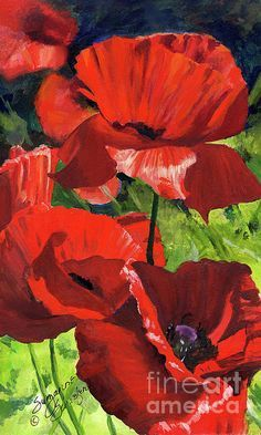 Red Poppies Print by Suzanne Schaefer