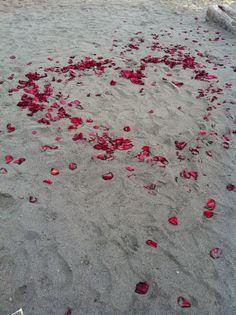 rose petals at the beach.  great romantic picnic!