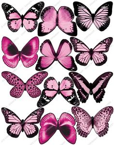 Cakeshop 12 x PRE-CUT Light Pink Edible Butterfly Cake Toppers -- Unbelievable product is here! : baking decorations