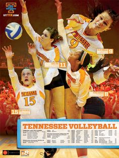12-volleyball_poster.jpg (525×700)
