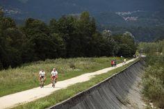 Ci sono vari itinerari percorribili in bicicletta e MTB in #Alpago  http://www.alpagocansiglio.eu/it/sport-e-natura/sport-estivi/mtb