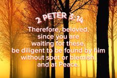 2 Peter 3:14 2 Peter 3:13-14 But according to his promise we are waiting for new heavens and a new earth in which righteousness dwells. Therefore, beloved, since you are waiting for these, be diligent to be found by him without spot or blemish, and at peace.