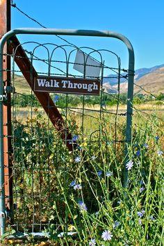 Site of Indian battlefield, Idaho