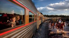 The most epic of all family adventures? Grand Canyon, of course. Experience the ride of a lifetime onboard the Grand Canyon Railway as you take in one of the world�s most impressive natural wonders. With entertaining characters and musicians onboard, kids will think they�ve travelled back in time to the Wild West.