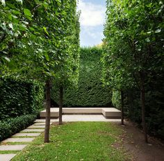 I love the garden bench and the path!! Add a pond in between the trees and oh man... awesome!    Stonnington House. Rob Mills Architect