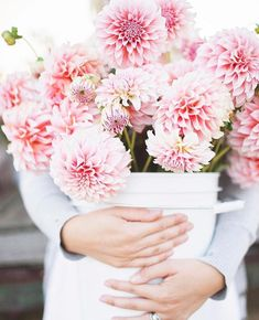 I don't know about you but I am 100% ready to wade through a field of dahlias again...