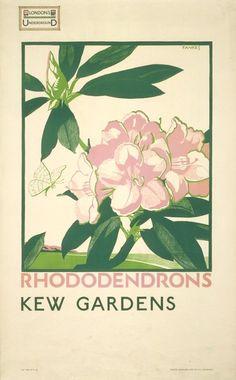 kew gardens 1910 - Google Search
