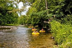 Check out the top Wears Valley outdoor activities, and get ready for a action-packed adventure in the Great Smoky Mountains. #itrip #vacationrental #travel