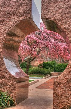 ✯ Moongate Garden, Washington DC...cherry blossoms at the Smithsonian Castle