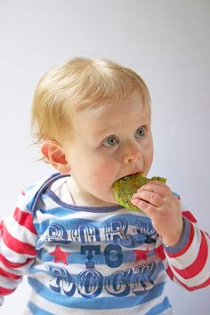 Pea fritters are a great finger food for kids. Delicious hot or cold and great for the lunchbox. A great baby-led weaning finger food. Baby Led Weaning First Foods, Baby Weaning, Finger Foods For Kids, Baby Finger Foods, Toddler Meals, Kids Meals, Toddler Food, Toddler Nutrition, Toddler Recipes