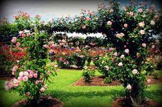 State Rose Gardens