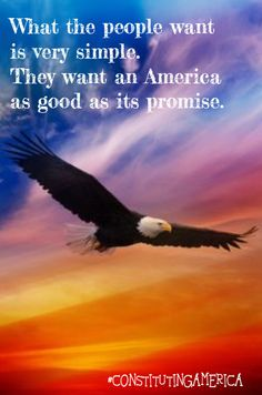 Created by:Evita Duffy, 2010 Best Artwork Winner, Member of Constituting America's Youth Advisory Board Cool Artwork, Bald Eagle, Wildlife, America, Bird, Movie Posters, Duffy, Youth, Nature