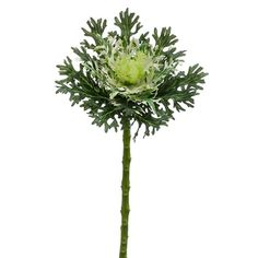 18' Artificial Cabbage Spray -Green/White (pack of 12) * Details can be found by clicking on the image.