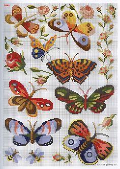 Butterfly perler bead patterns