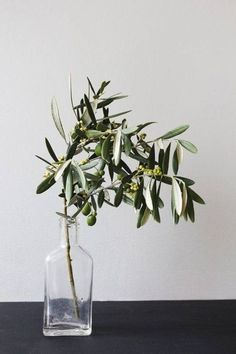 A simple olive branch placed within a glass bottle can have quite the impact on a table. Complement this centerpiece with a basic spread and crisp, white linen